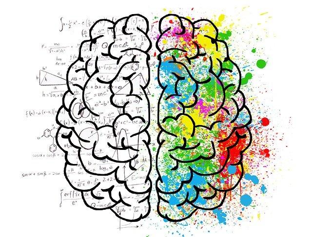 zkoumání mozku