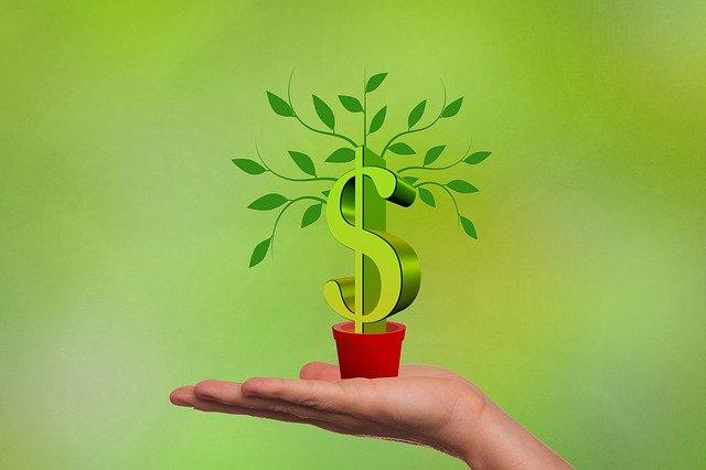 dolarový růst