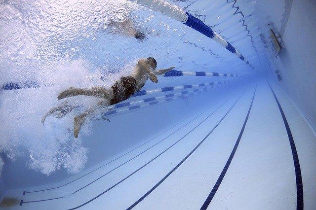 soutěž v plavání